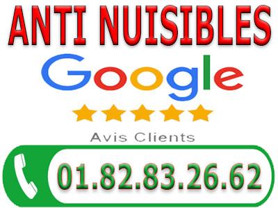 Punaises de lit Argenteuil 95100